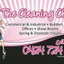 25353-The-Cleaning-Chick